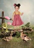 Niña y patos Foto de archivo