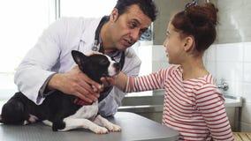 Niña y su perro lindo que visitan al veterinario profesional en la clínica foto de archivo libre de regalías