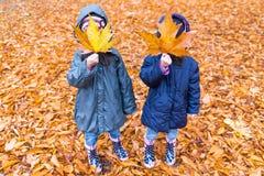 Niñas con una cara ocultada con una hoja de arce en un otoño p imagen de archivo