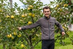 Niño adolescente en la cosecha de la manzana Imagen de archivo libre de regalías