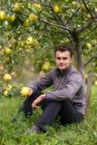 Niño adolescente en la cosecha de la manzana Foto de archivo libre de regalías
