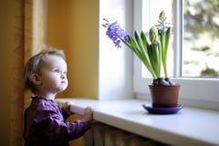 Niño adorable por la ventana con las flores foto de archivo libre de regalías