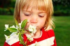 Niño con el flor de la manzana Imagen de archivo libre de regalías