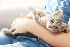 Niño con el gatito Imagen de archivo