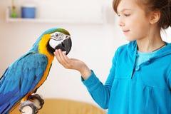 Niño con el loro del ara Foto de archivo libre de regalías