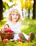 Niño con la cesta de manzanas en parque del otoño Fotografía de archivo
