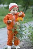 Niño con la flor Imagenes de archivo