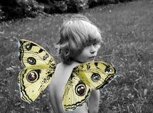 Niño con las alas de la mariposa Fotografía de archivo libre de regalías