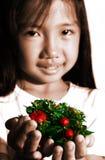 Niño con las decoraciones de Navidad Foto de archivo libre de regalías
