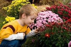 Niño con las flores Fotografía de archivo libre de regalías