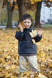 Niño con las hojas de otoño Imagenes de archivo