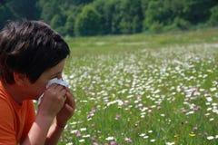 Niño con una alergia al polen mientras que usted sopla su nariz con a Foto de archivo libre de regalías