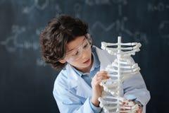 Niño curioso que estudia la biotecnología en la escuela Foto de archivo