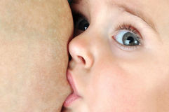 Niño de amamantamiento del niño del bebé Fotografía de archivo