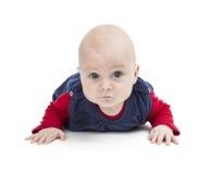 Niño de arrastre que mira en cámara Foto de archivo