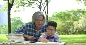 Niño de ayuda del hombre mayor con la preparación de la escuela en el parque almacen de video
