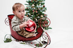 Niño de Ho Ho Ho en poco trineo de la Navidad Fotos de archivo libres de regalías