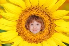 Niño del girasol fotografía de archivo libre de regalías