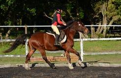 Niño del montar a caballo fotos de archivo