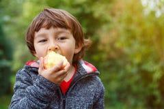 Niño del niño que come la naturaleza al aire libre de la caída del otoño de la fruta de la manzana sana foto de archivo libre de regalías
