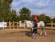 Niño del whith de la lección de montar a caballo Imagen de archivo