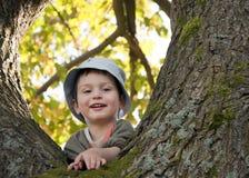 Niño en árbol Imagen de archivo