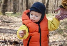Niño en bosque imagen de archivo libre de regalías
