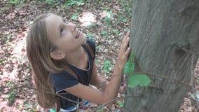 Niño en bosque, niño que juega en naturaleza, muchacha en la aventura al aire libre detrás de un árbol imágenes de archivo libres de regalías
