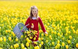 Niño en campo de flor amarillo del tulipán en Holanda imágenes de archivo libres de regalías