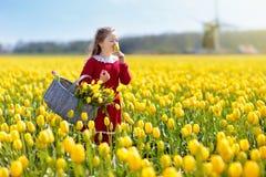 Niño en campo de flor amarillo del tulipán en Holanda fotografía de archivo libre de regalías