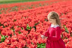 Niño en campo de flor rojo Jardín de la amapola y del tulipán foto de archivo libre de regalías