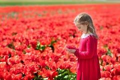 Niño en campo de flor rojo Jardín de la amapola y del tulipán fotos de archivo libres de regalías