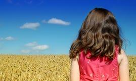 Niño en campo de trigo Imágenes de archivo libres de regalías