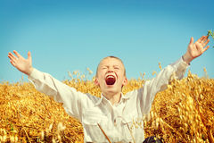 Niño en campo de trigo Imagenes de archivo
