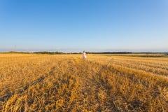 Niño en campo de trigo outdoor Fotos de archivo