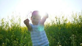 Niño en contraluz en prado en hierba, niño hermoso que camina en campo en día risueno, pequeño individuo feliz que juega en la na