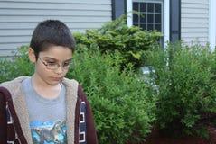 Niño en cuestión Fotos de archivo