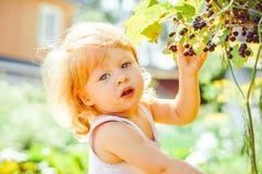 Niño en el jardín con las bayas fotografía de archivo
