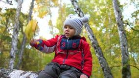 Niño en el parque del otoño que se divierte que juega y que ríe, caminando en el aire fresco Un lugar escénico hermoso almacen de video