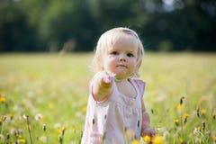 Niño en el prado del diente de león en verano Imagenes de archivo