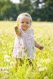Niño en el prado del diente de león en verano Imagen de archivo libre de regalías