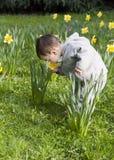 Niño en flores Fotografía de archivo
