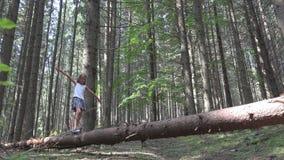 Niño en Forest Walking Tree Log Kid que juega la madera al aire libre de la niña de la aventura que acampa almacen de metraje de vídeo