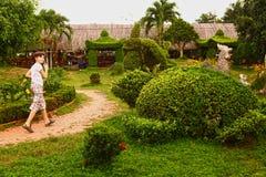 Niño en jardín tropical del parque Imagen de archivo libre de regalías