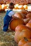 Niño en la corrección de la calabaza Imagen de archivo libre de regalías
