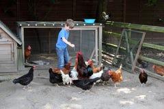 Niño en la granja fotografía de archivo libre de regalías