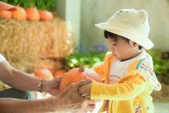Niño en la granja Fotos de archivo libres de regalías