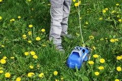 Niño en la hierba con la máquina fotografía de archivo libre de regalías