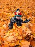 Niño en las hojas Imágenes de archivo libres de regalías