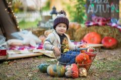Niño en parque del otoño Muchacho adorable feliz con las hojas de la caída El concepto de risas de la niñez, de la familia y del  fotos de archivo libres de regalías